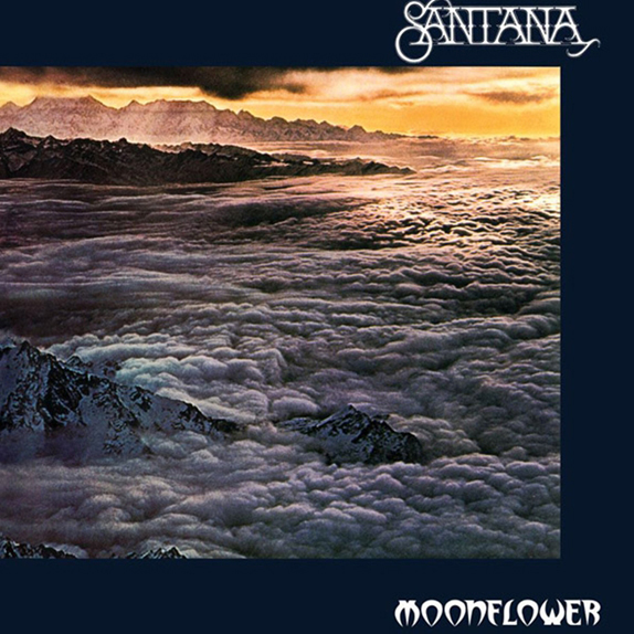 1977 – Moonflower