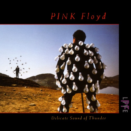 1988 – Delicate Sound of Thunder (Live Album)