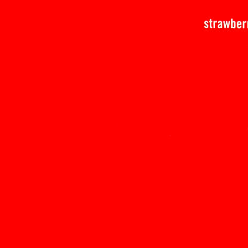 1993 – Strawberries Oceans Ships Forest (The Fireman Album)