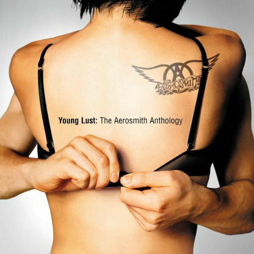 2001 – Young Lust: The Aerosmith Anthology (Compilation)