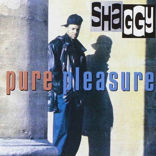 1993 – Pure Pleasure