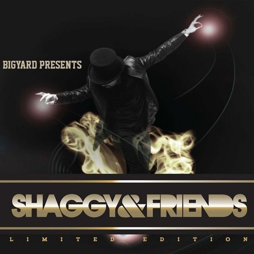2011 – Shaggy & Friends