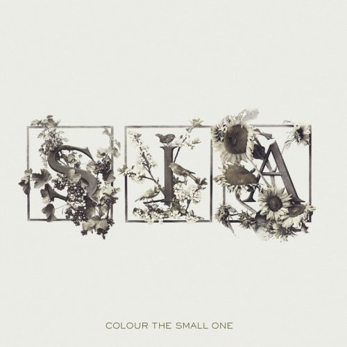 2004 – Colour the Small One