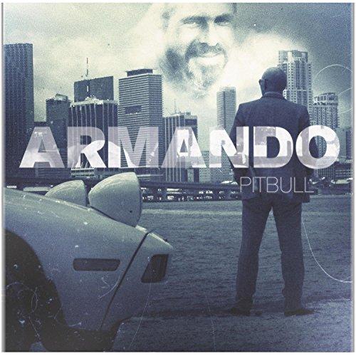 2010 – Armando