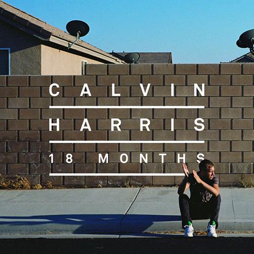 2012 – 18 Months