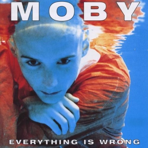 1996 – Everything Is Wrong