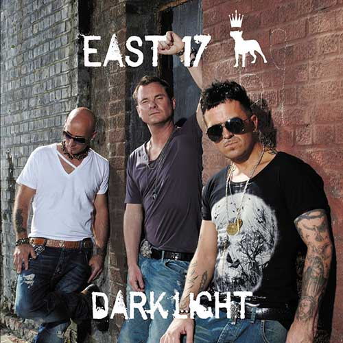 2012 – Dark Light