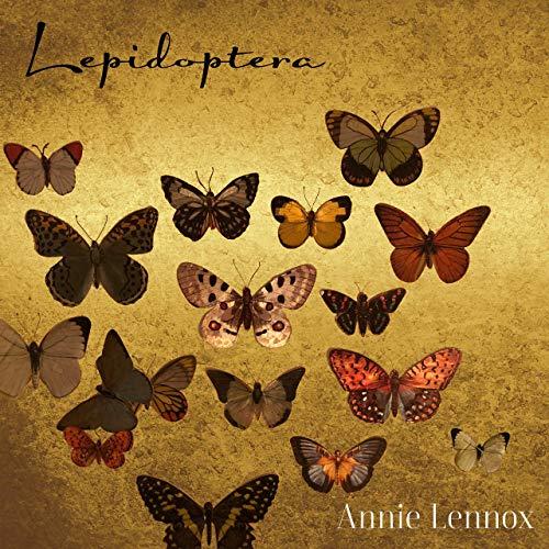 2019 – Lepidoptera (E.P.)