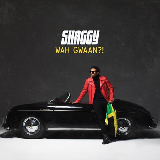2019 – Wah Gwaan?!