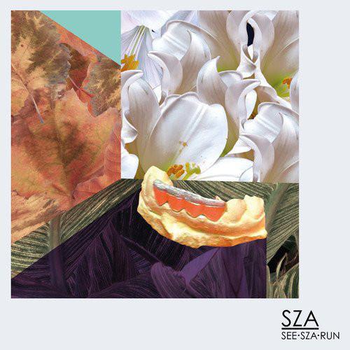 2012 – See.SZA.Run